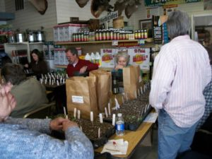 Local residents learn how to prepare seedlings at inside of Quinn's Nursery